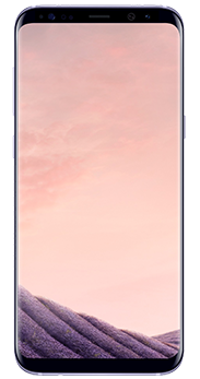 Samsung Galaxy S8+ 64 GB orchid grey
