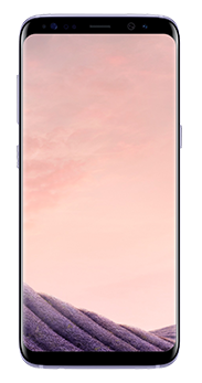 Samsung Galaxy S8 64 GB orchid grey