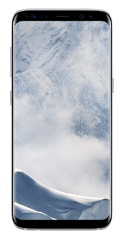 Samsung Galaxy S8 64 GB artic silver