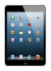 iPad Mini 16GB Wi-Fi gris espacial